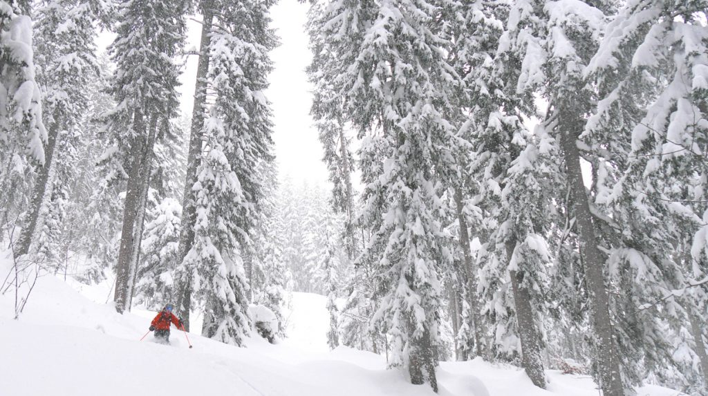 chamonix backcountry powder skiing